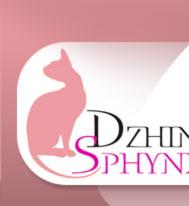 Dzhinestra Sphynx